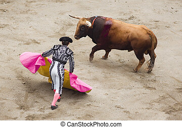 bull and bullfighter - image tipical of spain, a bullfight...