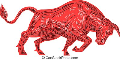 Bull Charging Drawing