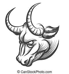 Bull Head - Angry Bull head. Illustration in engraving...