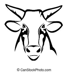 Bull head - Vector illustration : Bull head on a white...