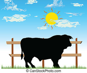 bull on the farm vector