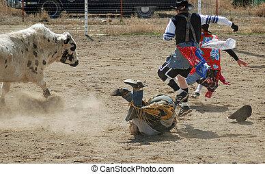 Bull rider on ground
