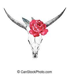 Bull skull watercolor