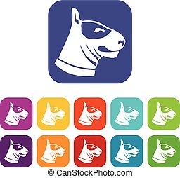 Bull terrier dog icons set vector illustration in flat style...