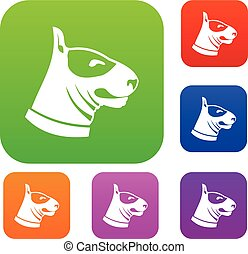 Bull terrier dog set collection