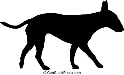 Bull terrier dog silhouette on a white background