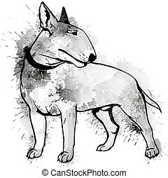 Bull terrier grunge illustration