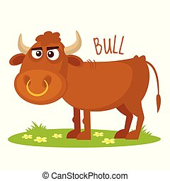 Bull Vector illustration isolated