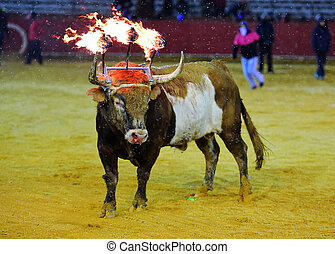 Bull with fire in the horns
