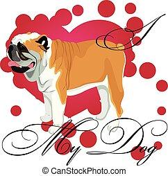 bulldog, amore, mio