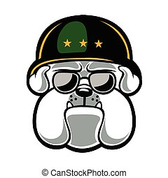 Bulldog Army Mascot.