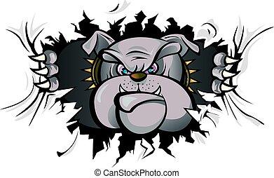 bulldog, ataque