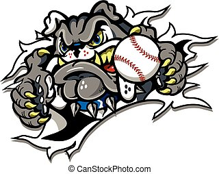 bulldog baseball team design with mascot ripping through...