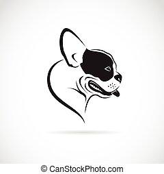 (bulldog), beeld, dog, vector, achtergrond, witte