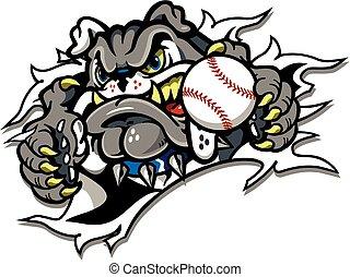 bulldog, beisball