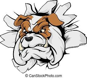 Bulldog breakthrough