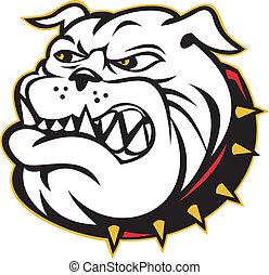 bulldog, cabeza, perro, enojado, mestizo
