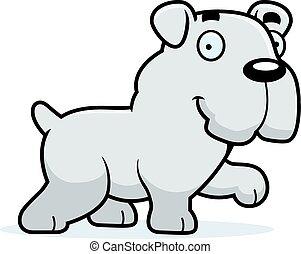 bulldog, camminare, cartone animato