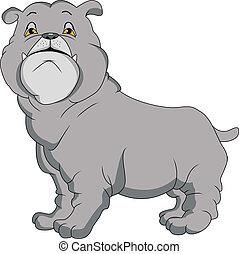 bulldog, caricatura, inglés