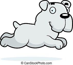 bulldog, correndo, cartone animato