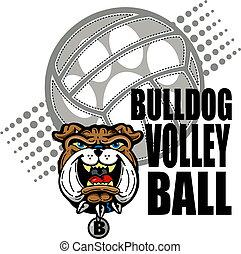 bulldog, diseño, voleibol