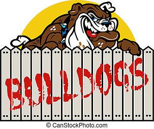 bulldog, el smirking, cerca