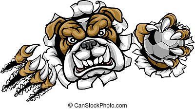 bulldog, football calcio, mascotte