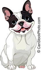 bulldog, francés