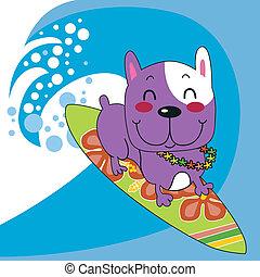 bulldog, francese, surfer