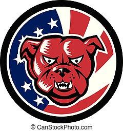 bulldog-front-angry-HEAD CIRC GR USA-FLAG