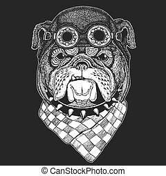 Bulldog Hand drawn vintage image for t-shirt, tattoo,...