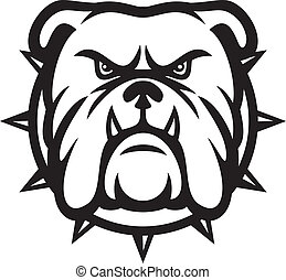 Bulldog head (angry bulldog, bulldog vector illustration)