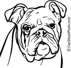 bulldog., illustration., profili, cane