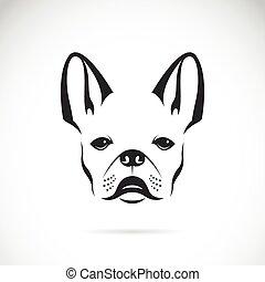 (bulldog), imagen, perro, vector, plano de fondo, blanco