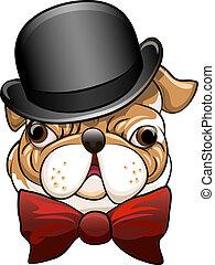 Bulldog in a bowler hat