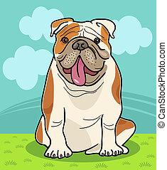 bulldog, inglés, caricatura, ilustración, perro