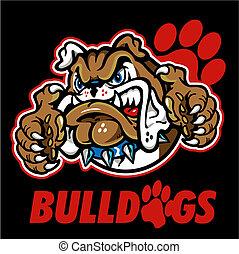 bulldog, inglés, mascota