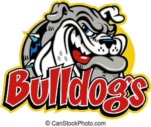 bulldog, lindo, el smirking, cara