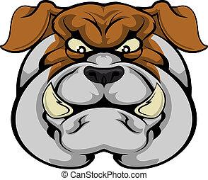 bulldog, mascotte, faccia