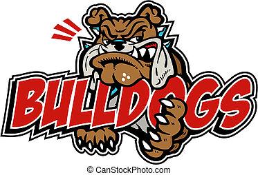 bulldog, media, dicitura