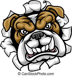bulldog, media, sport, mascotte