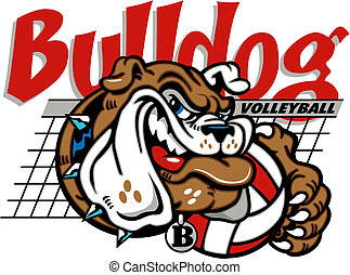 bulldog, net, volleybal