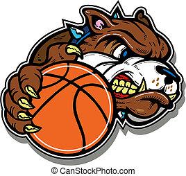bulldog, pallacanestro, media