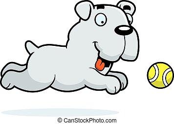 bulldog, pelota, perseguir, caricatura