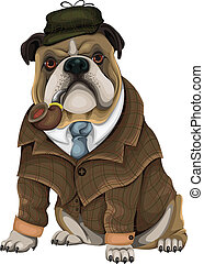 bulldog, sherlock