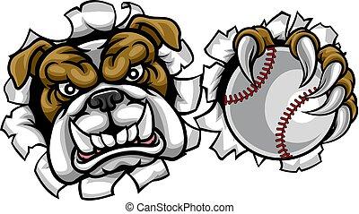 bulldog, sporten, honkbal, mascotte