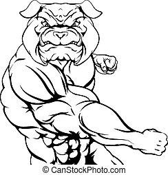 bulldog, vecht