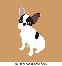 bulldog, vector, dog, franse