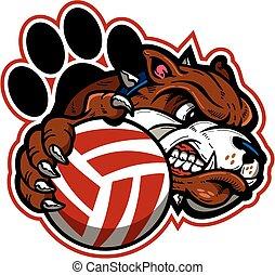 bulldog volleyball