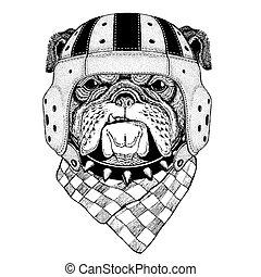 Bulldog Wild animal wearing rugby helmet Sport illustration...